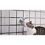 猫が好きなあの食材は結石になりやすい?手作り餌での注意点